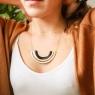 Collar Akita